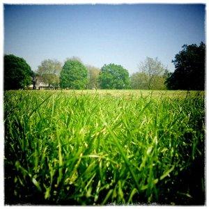 Hilly Fields © LondonSE4